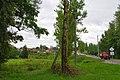 Obal, Belarus - panoramio (55).jpg