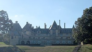 English: Oheka Castle from the eastern side.