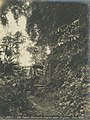 Old French Decauville Engine near Frijoles - Oct 1908.jpg