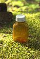 Old medicine bottle 01.jpg