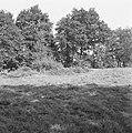 Ontginning, grondbewerking, egaliseren, bezanden, ruilverkavelingen, woeste gron, Bestanddeelnr 159-0742.jpg