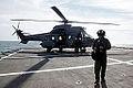 Operação Felino- Anfíbios desembarcam no litoral do Espírito Santo (9897492095).jpg