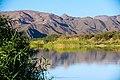 Oranjefloden-2354 - Flickr - Ragnhild & Neil Crawford.jpg