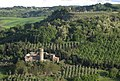 Orvieto monastery hillside from clifftop.jpg