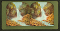 Osprey Falls on Middle Gardiner River, Y. N. P, from Robert N. Dennis collection of stereoscopic views.png