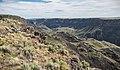 Owyhee Canyon Overlook, Owyhee River Canyon Wilderness Study Area (27878765079).jpg