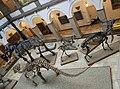 Palaeontology Museum gallery.jpg