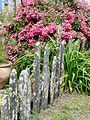 Palis fleuris (Treffieux).jpg