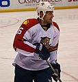 Panthers vs Blues-8400 (6448658617).jpg