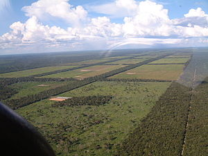 Land banking - Advancing agriculture in the Paraguay Chaco.