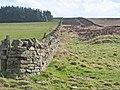 Parallel walls, Saltersgate Lane - geograph.org.uk - 357610.jpg