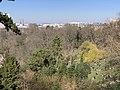 Parc Buttes Chaumont vu depuis Rue Botzaris - Paris XIX (FR75) - 2021-03-06 - 3.jpg