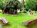 Park przy Klasztorku 08.JPG