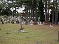 Parkstone Cemetery - geograph.org.uk - 1495077.jpg
