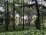 Parque Santos Dumont 2017 004.jpg
