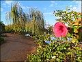 Parque das Águas - panoramio (17).jpg