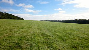 Part of Long Hill training grounds, Newmarket.jpg