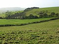 Pastures, Quainton - geograph.org.uk - 658782.jpg