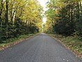 Path - Chequamegon-Nicolet National Forest - Oct 2017.jpg
