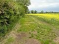 Path Near Bunny - geograph.org.uk - 1335742.jpg