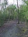 Path near Waltham Hall - geograph.org.uk - 762419.jpg