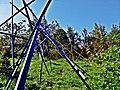 Pedro Meier Skulpturen, »Mikado«, BLAU, GELB, ROT, in Ausstellung Franz Eggenschwiler Stiftung »Work in Progress« 2017. Skulpturengarten. Foto © Pedro Meier Multimedia Artist.jpg