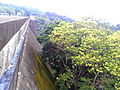 Peppara Dam Reservoir Side View IMG 20141003 174810.jpg