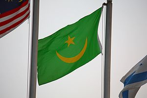 Flag of Mauritania - Waving flag of Mauritania (1959–2017)