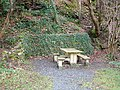Picnic table beside Abergwynant Woods - geograph.org.uk - 1098723.jpg