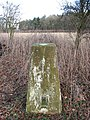 Pigg's Grave - triangulation pillar - geograph.org.uk - 1122981.jpg