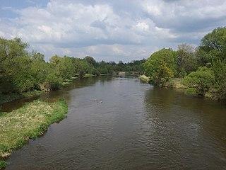 Pilica (river)