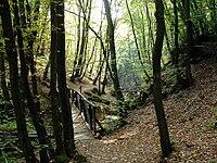 Pilisszentkereszt, Gorge with pedestrian bridge. National Blue Trail.jpg