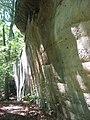 Piney Creek Site overview.jpg