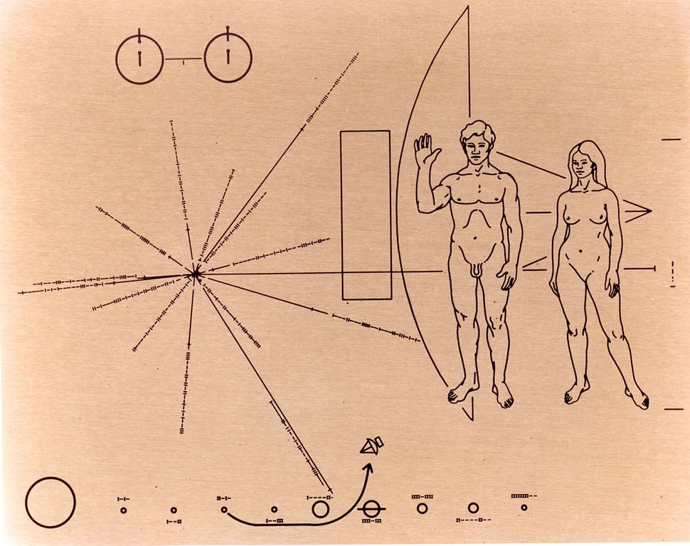 the plaque affixed to Pioneer 10 and Pioneer11