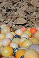 Plastic fishing balls and granite.jpg