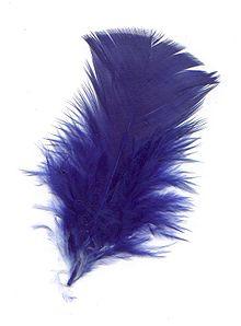 La symbolique du Bleu dans LUMIERE 220px-Pluma-azul