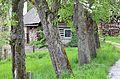 Poertschach Brockweg Birnbaumallee und alte Schmiede 04052013 191.jpg