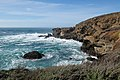 Point Lobos State Natural Reserve 1 18 19 (39872289303).jpg