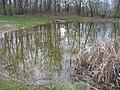 Pramsdorfer Teich (Pond at Pramsdorf) - geo.hlipp.de - 35247.jpg