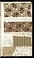 Printer's Sample Book, No. 19 Wood Colors Nov. 1882, 1882 (CH 18575281-42).jpg