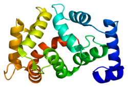 Protein KCNIP1 PDB 1s1e.png