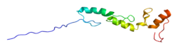 Protein ZNF295 PDB 1wjp.png