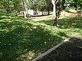 Putrajaya Botanical Garden in Malaysia 07.jpg