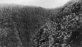Queensland State Archives 1184 Echo Gorge National Park South Queensland c 1930.png