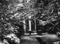 Queensland State Archives 1339 Teresa Falls Paronella Park Innisfail c 1935.png