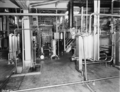 Queensland State Archives 1805 Separating and milk products section Pauls Montague Road South Brisbane November 1955.png