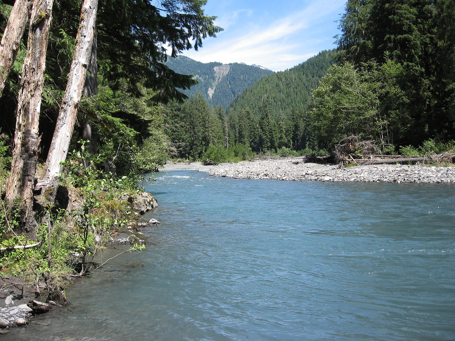 Queets River - Wikipedia