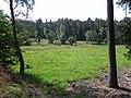 Quellgebiet Ehlbeck Munster Nord 01.JPG