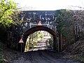 Railway Bridge near Pipplepen Farm - geograph.org.uk - 1172531.jpg