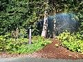 Rainbow in San Francisco Botanical Garden (26956).jpg